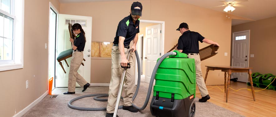 Paris, KY cleaning services